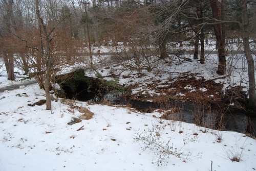 The Stream And The Driveway
