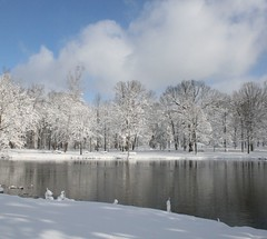snow storm (Kathy~) Tags: winter white snow landscape michigan mother annarbor newyearseve cw scape cottonballs bigmomma hudsonmills aplusphoto photofaceoffwinner photofaceoffplatinum thechallengegame challengegamewinner pfogold 11inchesofthewhitestuff fotocompetition fotocompetitionbronze fotocompetitionsilver challengew herowinner thepinnaclehof tphofweek52 gamesweepwinner favescontestrunnerup