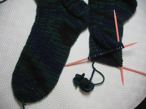 Thuja Socks