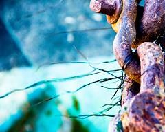 rusty chain #4 (robbie ewing) Tags: d50 chains nikon rust aqua leighonsea minesweeper yachtclub beachboat 18200mmvrlens leighonseayachtclub