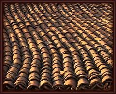 .... on a Shingle :D (Kuzeytac) Tags: travel roof orange color colour texture turkey geotagged türkiye turkiye minimal historic geotag leyla doku çatı lsi balikesir minimalizm alaturka portakal balya kiremit hpphotosmartm425 motifdwinner 3waychallenge2nd kuzeytac danisment photofaceoffchallenge1 copyrightedallrightsreserved aqualityonlyclub