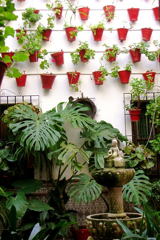 patio in Córdoba in winter