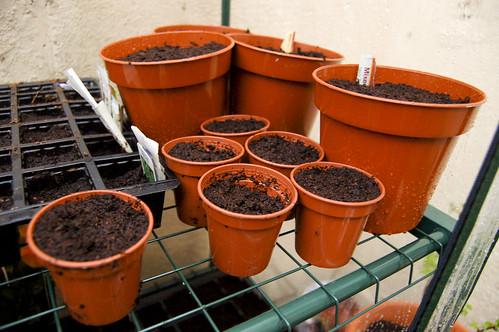 Pots and pots