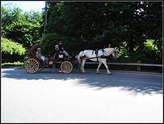 3 (luciferspider) Tags: 美国 纽约 中央公园