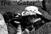 me the gator in black 100 thumbnail