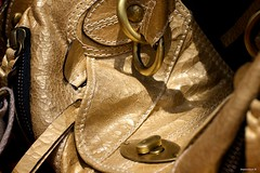 CoSTUME NATIONAL (Stephan Geyer) Tags: colour bag 50mm gold golden dubai uae purse cos 5014 ef50mmf14usm costumenational