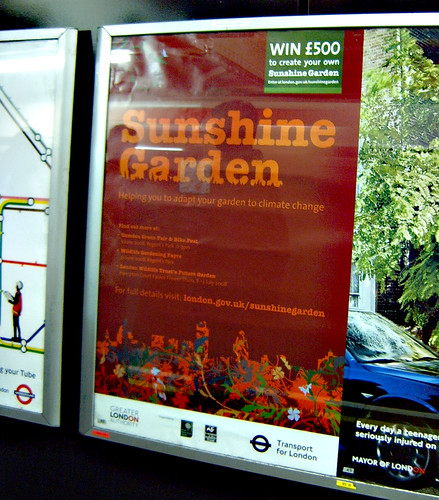 Sunshine Garden Poster on the Tube