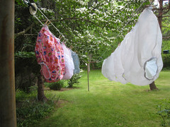 Drying (nappyboy) Tags: public pants nappy ab lovers diaper plastic sissy diapers dl nappies humiliation waterproofs abdl