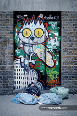 Graffiti door owl rubbish (wprasek) Tags: door uk england urban building london art public ecology wall architecture trash rebel graffiti garbage junk paint doors architecturaldetail grim decay grunge entrance structures architectural doorway crime pollution ugly owl rubbish vandalism environment portal exit refuse bricklane environmentalism decaying portals dilapidated rundown ecosystem polluted edifice edifices pollute assignment4 greaterlondon warrenprasek foliourban sharedurbanspace xoodu wprasek wwwxooducom wwwwprasekcom