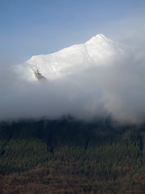 Mount McGinnis, cloud, and trees