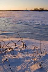 Frozen Slough (baldwinm16) Tags: winter sunset snow cold ice frozen frigid springbrook springbrookprairie crookedslough illinoisforestpreserve springbrookprairieforestpreserve