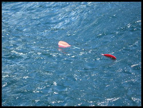 newzealand kayak paddle milfordsound geo:country=newzealand