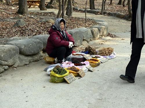 Korea (454)