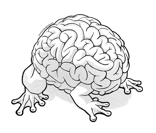 Brain with frogs legs!
