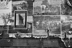 Le langage et la pensée (J.Martin14) Tags: affiches message engagement révolte