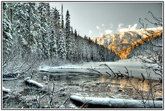 Olive Lake III (Gerad Coles) Tags: winter lake snow cold landscape outdoors frozen scenic rockymountains canadianrockies kootenaynationalpark olivelake