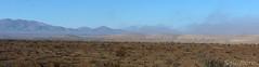0camanchaca (Spiniflores) Tags: desiertodeatacama camanchaca