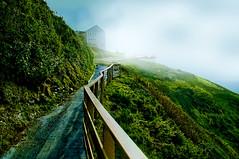 The Fog is Rising (charhedman - Taking a short break) Tags: sea sky fog oregon fence florence lion caves