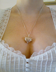 $19.95 (Nikita Kashner) Tags: cameraphone moblog necklace heart jewellery nokian73