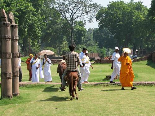 Le Parc aux Cerfs dans Légendes Indiennes 2056975734_baa5e01907