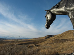 Bronze Rider Cochrane (ocean.flynn) Tags: canada history walking geotagged social alberta geotag stoney geotagging walkingtrails calgarydaytrips
