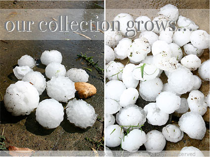 A collection of hailstones
