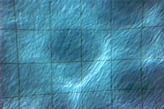 tecido celular