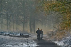 Silence (Pieter Musterd) Tags: park winter people snow cold holland forest bravo couple sneeuw nederland thenetherlands denhaag bos soe thehague koud smrgsbord babywagen instantfave pieter007 25faves canoneos400d sorghvliet pietermusterd