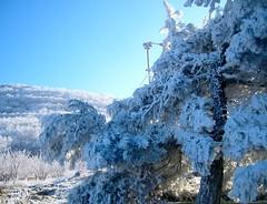 Blue white (sevgi_durmaz) Tags: snow cold landscape explore firstsnow bluewhite platinumphoto theunforgettablepictures brillianteyejewel theperfectphotographer