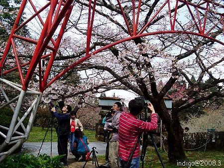拍照 (by indigo@Taiwan)