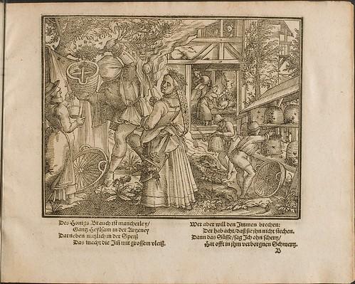 Kunstliche Wolgerissene Figuren by Tobias Stimmer and Christoph Maurer 1605 (HAB)