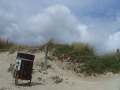 vogamari's trash can (doo ramone) Tags: beach clouds vent vacances spain sand wind cloudy 05 sable 29 trashcan plage formentera 08 laislabonita troubledsun