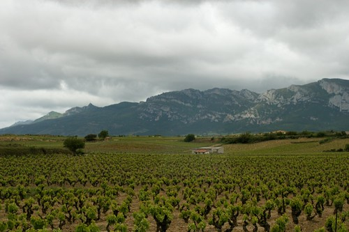 Scenery from La Rioja