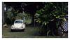17_02_05_132p (2) (Quito 239) Tags: volkswagen 1971volkswagen 1971volkswagensuperbeetle superbeetleconvertible vw bug vocho escarabajo puertorico haciendaigualdad volky