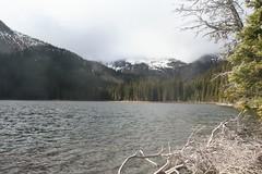 Back in the sun! (Tarun77) Tags: lake larch chiwaukum