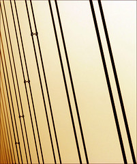 strings attached (me*voil) Tags: sf ca abstract lines yellow minimal shiningstar ggb linescurves godlengatebridge dissymmetry mywinners compositionfirst betterthangood
