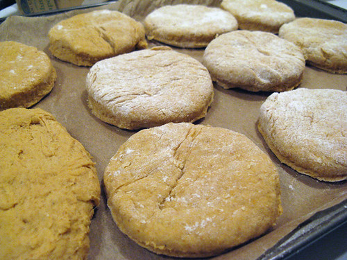 pumpkinBiscuits_002