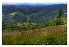 South view from Mount Belchen (RuedisFotos) Tags: green forest trekking germany deutschland baden schwarzwald blackforest wandern wanderung mywinners westweg neuenweg crossingtheblackforest