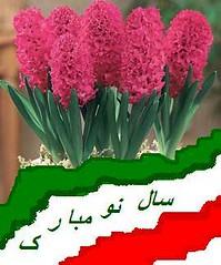 Norooz Mobarak (firooz_t) Tags: new happy persian year norooz norouz