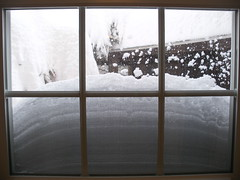 The hall window