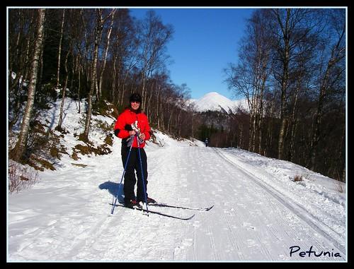 Petunia på ski