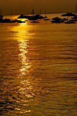 Gold In The Air Of Summer (Neville_S) Tags: sea summer sun sunlight water beautiful silhouette yellow sunrise boats gold boat amazing fantastic raw song ripple awesome 100mm canon350d ripples rays mumbai kingsofconvenience iphotooriginal canon100mmmacrof28 goldintheairofsummer nevillesukhiaphotography