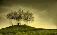 hill romantic (riisli) Tags: trees light sky people monochrome sepia bench mono couple mood shadows hill romantic supershot justimagine anawesomeshot diamondclassphotographer newacademy goldenheartaward