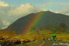 Biddy's Rainbow !