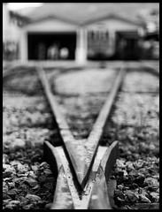 V (Iigo Sierra) Tags: blackandwhite bw byn blancoynegro train tren tracks railway depthoffield v crossroads cruce ferrocarril profundidaddecampo vias cambiodeagujas