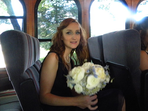 anne's wedding (10)