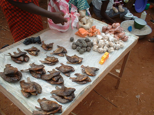 Poisson fumé Burkina Faso
