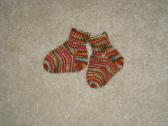 Chanticleer baby socks