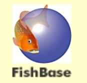 FISHBASE Modificada, Autora: Fernanda Pessoa (membro do PES)