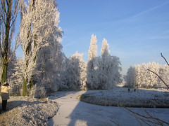 Leiden (Eisbeertje) Tags: winter leiden december sneeuw nederland 2007 zuidholland zuidwest kiljanpad